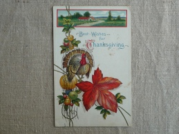 Best Wishes For Thanhsgiving Embossed Landscape Music Grape Of Fruits Providence 1913 SB 622. Voir Photos. - Thanksgiving