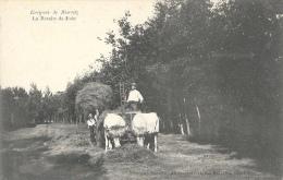Environs De Biarritz - La Recolte Du Foin - Carte Non Circulée - Cultures