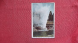 - Wyoming> Yellowstone  Park   Riverside Geyser - 2103 - Yellowstone
