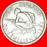 ★MAORI WARRIOR: NEW ZEALAND ★ SHILLING 1951! LOW START ★ NO RESERVE! George VI (1937-1952) - Nouvelle-Zélande