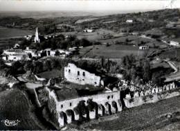 81- VAOUR - CPSM- Vue Générale - Ruines Des Templiers - Vaour