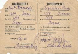 Rare Germany-Ukraine 1942 Set Of Soviet Passport+bilingual Ausweis (German Part Typed By Ukrainian Transliteration!) - 1939-45