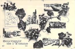 Souvenir De L'Yonne. - France