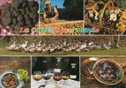 19 - La Corrèze Gourmande - Multi Vues: Truffes, Séchage Des Noix, Champignons, Oies, Liqueux, Denoix Clafoutis Millard - France