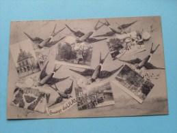 Souvenir Des LILAS () - Anno 1929 ( Voir/zie Foto Voor Details ) !!