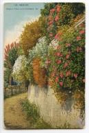 MENTON - Chemin Fleuri à La Frontière - Colorisée Non écrite - 2 Scans - Menton