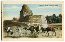Un Marabout Dans Le Sud - Afrique Du Nord  - Colorisée Non écrite - 2 Scans - Algérie