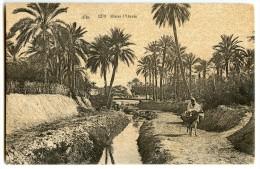 Dans L'Oasis - Afrique Du Nord  - Ruisseau, âne - Sépia Non écrite - 2 Scans - Algérie