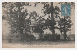 59 NORD - MAING La Chapelle ND Du Saint-Cordon Dans Les Marais De Fontenelle (voir Descriptif) - France