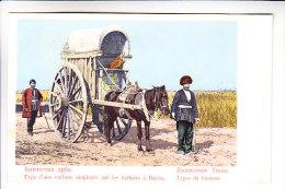 Caucasus   Type BAKU JUDAICA - Postcards