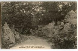 Forêt De Fontainebleau - Route De La Butte Aux Aires (Mont Ussy) - Attelage - CPA Vierge Non écrite - 2 Scans - Fontainebleau