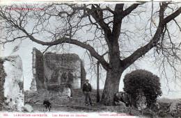 Cpa LABARTHE DE NESTE, Les Ruines Du Château, Promeneurs  (51.20) - France