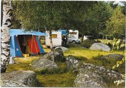 VIALVERT EN SIDOBRE (cpsm 81)  Le Terrain Du CAMPING CLUB DE FRANCE - - France