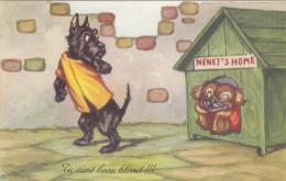 CPA Chien Humanisé Position Humaine Niche Dragueuse Humour Dog Illustrateur - Chiens
