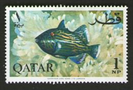 QATAR 1965 - PESCI IN ACQUARIO - Num. Catalogo:  Michel  QA 72A  Nuovo 47x31 Mm - Qatar