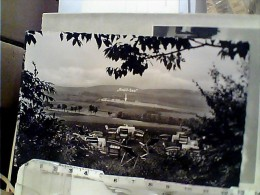 "GERMANY Schwarzenborn, Hotel ""Bogler Haus"", Gartenpartie N1950  FC6187 - Germania"