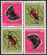 697 - Trauermantel Mit Abart Schmetterlings-Ei
