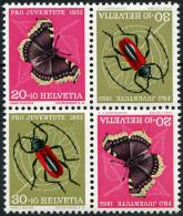 697 - Trauermantel Mit ABART Schmetterlings-Ei - Abarten