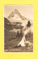 Postcard - Canada, Mt Assin I Boine   (21199) - Manitoba