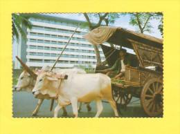 Postcard - Indonesia     (V 27237) - Indonesien