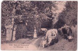 305- Bois De Vincennes - Le Pâturage -ed. E M - Arrondissement: 12