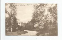 AT THE BOTANIC GARDENS TRINIDAD 1916 - Trinidad
