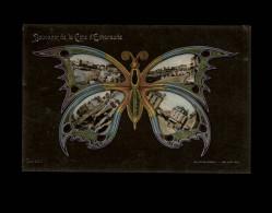 35 - PARAME - Souvenir De La Cote D'Emeraude - Papillon - Multi Vues - Parame