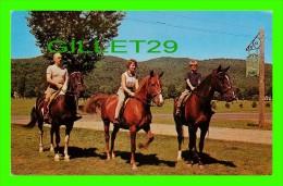 CHEVAUX - HORSES - FAIRLEE, VT - LAKE MOREY INN - HORSES RIDES - DEXTER - - Chevaux