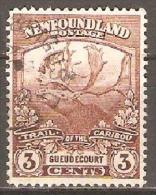 Newfoundland 1919 SG 132 Fu - 1857-1861