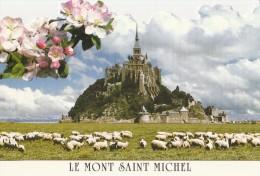 LE MONT SAINT MICHEL FLEUR DE POMMIER MOUTONS - Le Mont Saint Michel