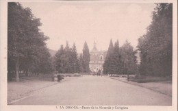 1 La Granja.- Paseo De La Alameda Y Colegiata. Coleccion Los Medranos - Segovia
