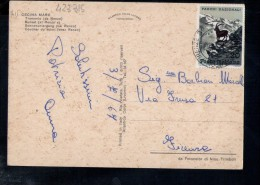 P3478 ANNULLO AMBULANTE EMPOLI FIRENZE 1967 SU CARTOLINA CECINA MARE CON TRAMONTO - STORIA POSTALE - 6. 1946-.. Repubblica