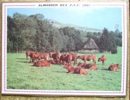 -- ALMANACH DES P.T.T. 1967  OLLER  -DOUBLE FACE  -TROUPEAU DANS LE CANTAL - DEUX CHAMPIONS --