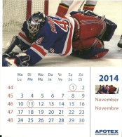 Apotex 2014 / Ice Hockey