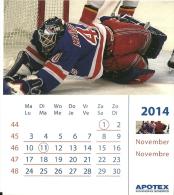 Apotex 2014 / Ice Hockey - Calendriers