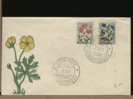 ISLAND  -  FDC  -  FLOWERS  1953 - FDC