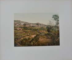 Teror,Gran Canaria Photochrome 1900 - Oud (voor 1900)