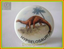 Clamecy ...Dinosaure Hypselosaurus... Ref AFF : 18-1994 ( Tiroir 1994) - Antiguos
