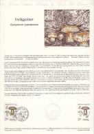 (2683-1987) Document Officiel De La Poste Série Nature Champignon Indigotier (N° 30-87) - Documentos Del Correo