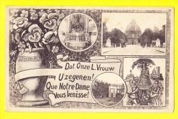 * Scherpenheuvel Zichem - Montaigu (Vlaams Brabant) * (D. Stalmans - Adriaens - Legia) Fantaisie, Bonjour De, Fleurs - Scherpenheuvel-Zichem