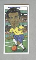 VAVA'......BRASILIEN....CALCIO..MUNDIAL....SOCCER...WORLD CUP....FOOTBALL - Trading Cards