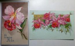 Lot 2x Litho ILLUSTRATEUR COLOPRINT KLEIN + BEGRO Dorure Orchidees Orchidee 1X Voyagé 1932 Antwerpen Timbre Flamme Sucre - Flores