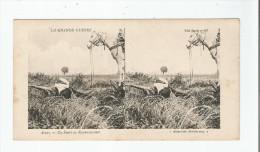 ARRAS UN SPAHI EN RECONNAISSANCE . LA GRANDE GUERRE (CARTE STEREOSCOPIQUE) - Weltkrieg 1914-18