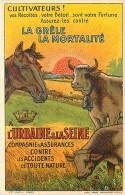 Publicité  - Pour Cultivateurs - Assurances Contre Les Accidents - Veaux Vaches Cochons Chevaux - Agriculture