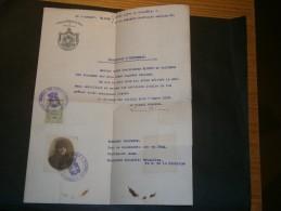 BRUXELLES-CONSULAT DE GRECE-14/12/1918-CERTIFICAT D'INDIGENAT AU NOM DE KLIMIS De Calymnos Nomikoudena Née En 1854 - Historical Documents