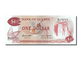 Guyane, 1 Dollar, Type Chutes De Kaieteur - Guyana Francese