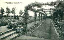 BELLECOURT - Château Du Pachy - Les Roseraies (Collection) - Manage