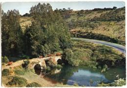 Petite Rivière Bretonne Et Vieux Pont Au Pays De L´ARGOAT- écrite Et Timbrée - 2 Scans - France