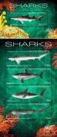 Micronesia 2012 Sharks MS +SS MNH - Micronesia