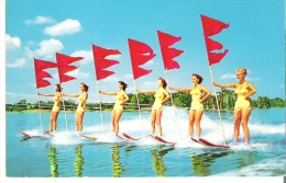 Water-Skiing Aquamaids On Parade, Florida Cypress Gardens - Ski Nautique